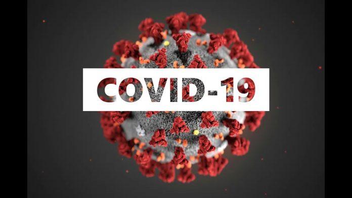 US professor praises Malaysia's effort in fighting Covid-19 -  Sarawakvoice.com